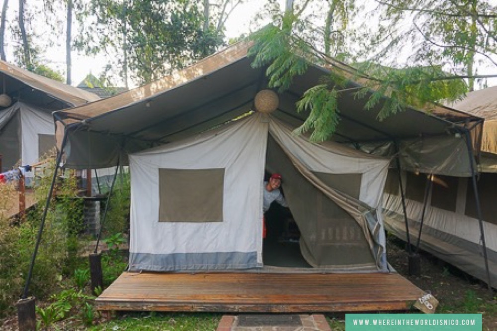 Mixed dorm in Wildebeest Eco Camp, Nairobi, Kenya